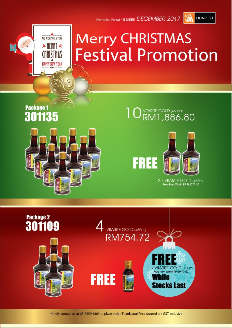 Merry CHRISTMAS Festival Promotion-December-2017